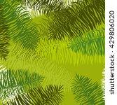 vector illustration leaves of... | Shutterstock .eps vector #429806020