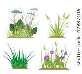 a set of floral and grass... | Shutterstock .eps vector #42987106