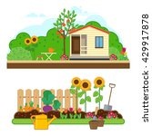 gardening set. illustrations... | Shutterstock . vector #429917878