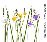 flowers in meadow  vector | Shutterstock .eps vector #429952798