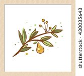 vector hand drawn rustic pear... | Shutterstock .eps vector #430035643