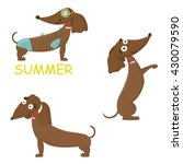 vector set with cute dachshunds | Shutterstock .eps vector #430079590