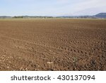Small photo of Acres of prime agricultural land will be used for growing cauliflower/Fraser Valley Vegetable Crop/Acres of prime agricultural land will be used for growing cauliflower.