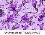 viola canina. violet forest.... | Shutterstock .eps vector #430149418