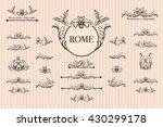 vector set of calligraphic... | Shutterstock .eps vector #430299178