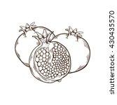 pomegranate hand drawn... | Shutterstock .eps vector #430435570