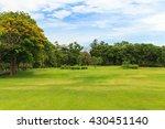 green trees in beautiful park... | Shutterstock . vector #430451140