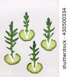 green vegetable organic pattern ... | Shutterstock . vector #430500334