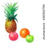 Tropical Fruit  Pineapple ...
