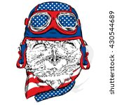 funny owl in biker helmet.... | Shutterstock .eps vector #430544689