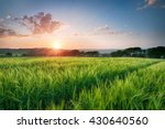 Dramatic Sunset Over Fields Of...
