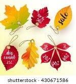autumn leaves discount.vector   Shutterstock .eps vector #430671586