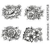 flower set | Shutterstock . vector #430693918
