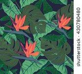 jungle pattern   Shutterstock .eps vector #430780480