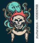 vector illustration of pirate...   Shutterstock .eps vector #430800988
