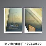 business template for brochure  ... | Shutterstock .eps vector #430810630