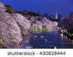 night view of massive cherry... | Shutterstock . vector #430828444
