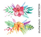 set of watercolor hand painted... | Shutterstock . vector #430875034