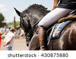 Horse At Show Jumping...