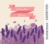 Lavender Flower Floral...
