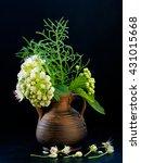 Small photo of Flower ornamental shrub Spiraea white in the jar