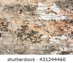 grunge and crack tree texture... | Shutterstock . vector #431244460