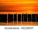 Sun set by the sea - stock photo