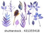 set of leaves and herbs painted ...   Shutterstock . vector #431355418