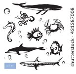 vector illustration. cute ocean ... | Shutterstock .eps vector #431387008