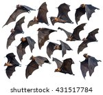 Flying Bats Isolated On White...