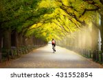 Постер, плакат: Cyclist on the beautiful