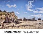 San Gregorio State Beach  San...