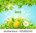 vector illustration of summer... | Shutterstock .eps vector #431682343