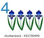 Number Four  Iris Flower.