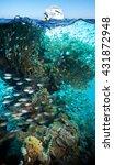 colorful underwater offshore... | Shutterstock . vector #431872948