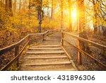 beautiful sunrise in autumn... | Shutterstock . vector #431896306