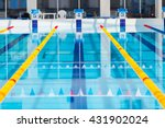 lanes of a competition swimming ... | Shutterstock . vector #431902024