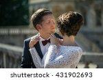 beautiful luxury newlyweds... | Shutterstock . vector #431902693