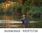 hippopotamus  hippopotamus... | Shutterstock . vector #431971726