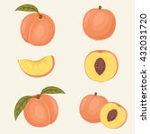 peach icons. fresh close up... | Shutterstock .eps vector #432031720