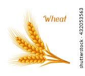 bunch of wheat  barley or rye...   Shutterstock .eps vector #432053563