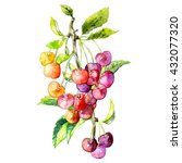 the branch of red ripe cherries.... | Shutterstock . vector #432077320