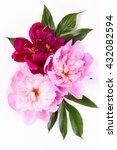 peony flowers   Shutterstock . vector #432082594