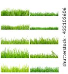 collection of grass in high... | Shutterstock . vector #432103606