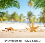 tropical beach with various... | Shutterstock . vector #432153010
