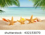 tropical beach with various... | Shutterstock . vector #432153070