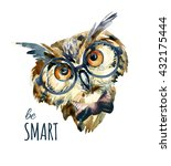 Watercolor Hipster Owl In...