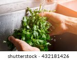 man's hands washing parsley.... | Shutterstock . vector #432181426