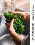 Small photo of Hands wash parsley and dill. Water flowing onto fresh greenery. Cook prepares ingredient for salad. Absolute cleanliness neeeded.