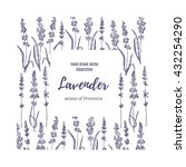 vector lavender hand drawn... | Shutterstock .eps vector #432254290